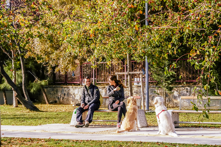 ISTANBUL, TURKEY - November, 2015: Man and woman with two dogs. Street Life in the Asian part of Istanbul in the Kadikoy district.