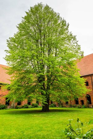 Courtyard of Saint Maria Church in Helsingor, Denmark.