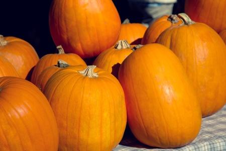 calabazas para Halloween en el mercado Foto de archivo