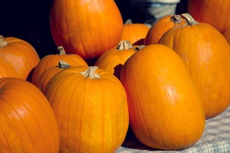 pumpkins for halloween on the market