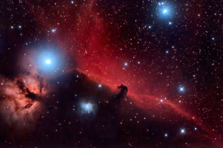 Horsehead Nebula and Flaming Tree  in the Constellation Orion photo