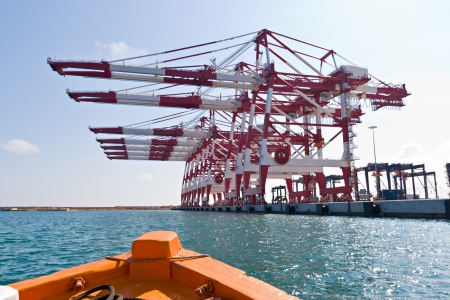Cargo Cranes in Industrial Port photo