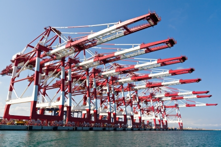 dockyard: Cargo Cranes in Industrial Port