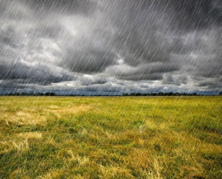Heavy Rain over a Prairie in Brittany, France Stock Photo