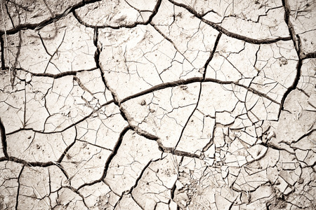 cracked earth: Dry cracked soil  Stock Photo