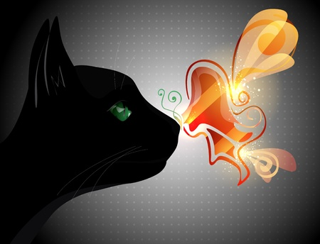 fireflies: Butterfly on the cat nose