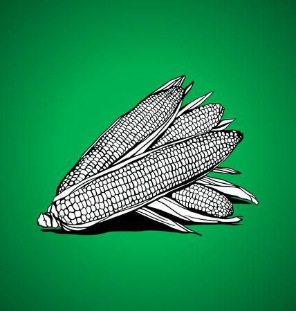 corny: three corn on a green background Illustration