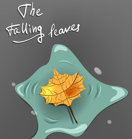 puddles: fallen to the ground in a puddle autumn leaf