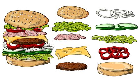 hamburger vector illustration, isolated, menu, loaf of bread with stuffing and sesame seeds