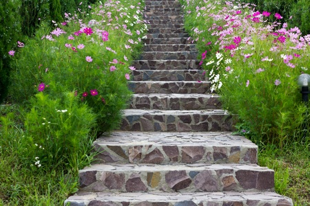 rock stairs surrounded by beautifull flowers