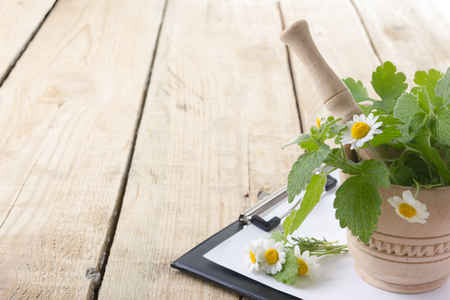 stethoscope isolated on white background: Fresh herb and medical clipboard on wooden table. Alternative medicine concept