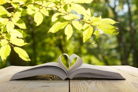 libro abierto sobre la mesa de madera sobre fondo borroso natural. página del libro del corazón. De vuelta a la escuela. Espacio en blanco.