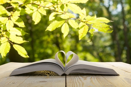 Open book on wooden table on natural blurred background. Heart book page. Back to school. Copy Space. Фото со стока - 52458683