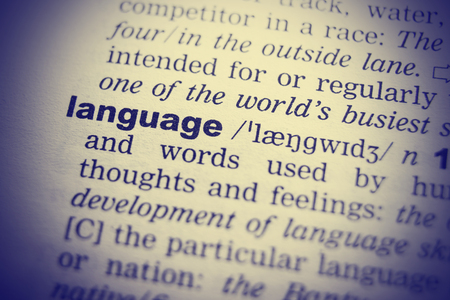 single word: Language Dictionary Definition single word with soft focus.