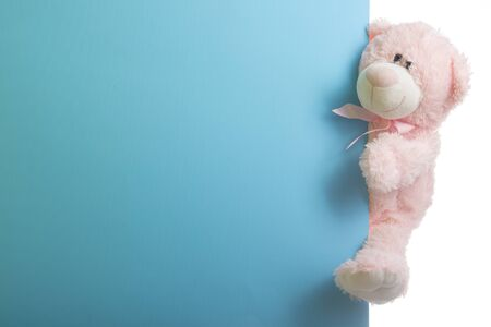 Cute teddy bear pink on color background with copy space