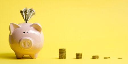 financial concept. Piggy bank and golden coin