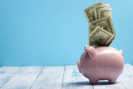 Piggy bank and golden coin. Savings and finance concept