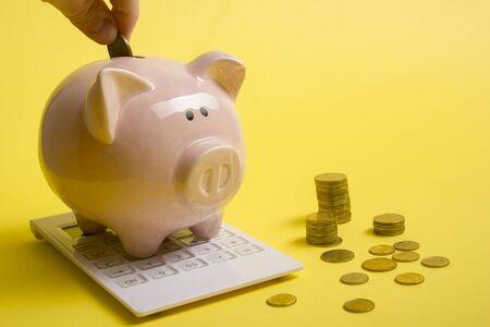 Piggy bank and golden coin. Savings and finance concept Foto de archivo - 131401140