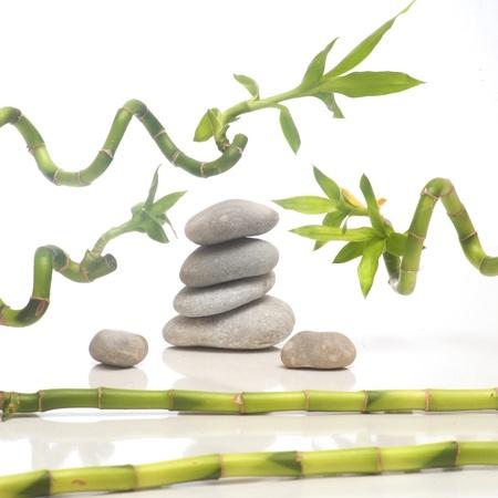 Zen composition photo