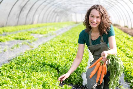 granjero: Vista de un Jóvenes cosecha zanahorias atractiva agricultores