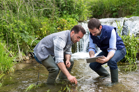 scientist man: View of a Scientist and biologist working together on water analysis