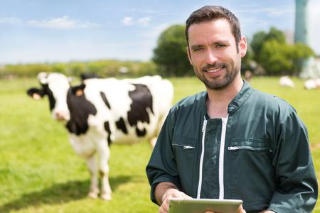 granjero: Vista de un joven agricultor atractiva en un pasto con las vacas Foto de archivo