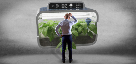 View of a Businesmann in front of a Digital vegetal plant connected