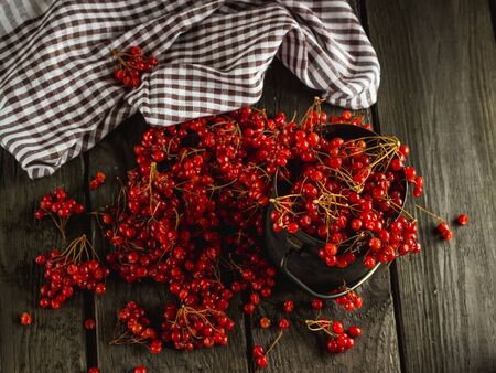 guelder rose berry: guelder-rose on a wooden table a still life Stock Photo