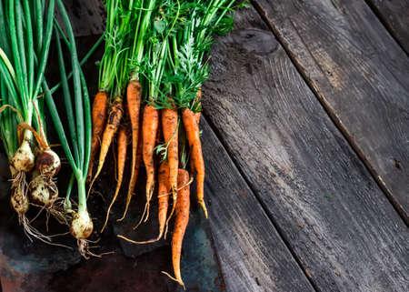 green onions: Carrot and green onions on dark wooden background Stock Photo