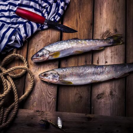 burbot: El pescado crudo río, el cuchillo y el chaleco eliminado en la vieja mesa de madera. estilo rústico, enfoque selectivo.