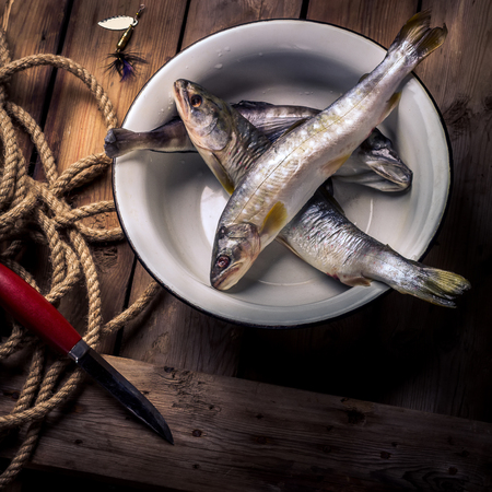 burbot: Raw river fish,knife and stripped vest on old wooden table. Style rustic, selective focus.