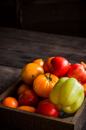 Red and yellow tomatos in wooden box. Dark wooden background. Selective focus. Stock Photo