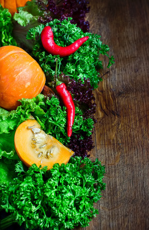 Fall  vegetables on dark wooden background. Style rustic. Selective focus. Place for text,