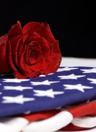 Ein einsamer rote Rose Tränen für einen gefallenen geliebt.  Standard-Bild
