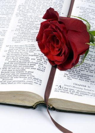 An open bible with a single red rose Foto de archivo