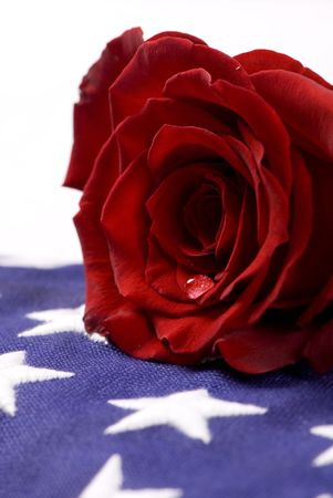 A lone red rose lying on top of a folded American flag. A single tear drop falls from the rose. I miss my daddy….my hero. 免版税图像