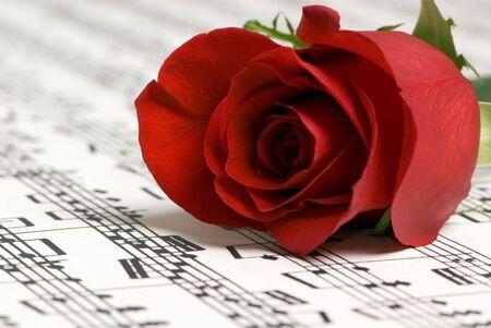 letras musicales: Una complicada pieza musical con una sola rosa en la parte superior. En representaci�n del amor por la m�sica, la sencillez de la m�sica y tambi�n la complejidad. Foto de archivo