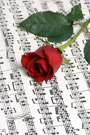 paper sheet: A complicated musical piece with a single rose on top. Representing the love of music, the simplicity of music and also the complexity. Stock Photo