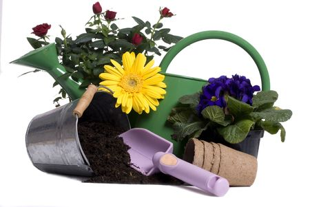 A watering bucket with a rose and all the gardening tools to plant it. Stock Photo