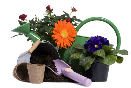 A bright orange flower and rose with all the tools to plant them. Springtime, growth, new life