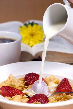 A healthy start to the morning. Cereal with fresh strawberries. Good for the body and Soul Stock Photo - 756585