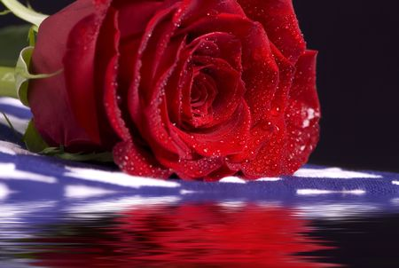 A single red rose on top of a flag with its reflection on the water in front. Stock Photo
