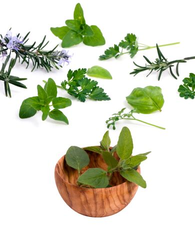 An assortment of fresh herbs straight from the garden and ready to cook. photo