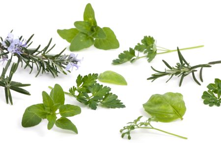 An assortment of fresh herbs straight from the garden and ready to cook. Stock Photo
