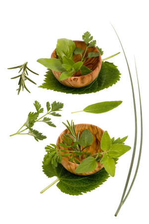 An assortment of fresh herbs straight from the garden and ready to cook. clipping path photo