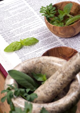 An assortment of fresh herbs straight from the garden and ready to cook. Stock Photo - 833039