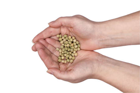 Two hands holding seeds for planting. Clipping path photo