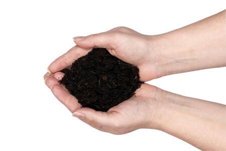 Two hands holding clean dirt for planting...spring, life. clipping path photo