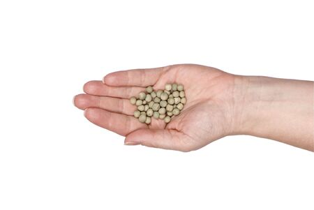 A single open hand with seeds in it. Ready for the spring planting. clipping path Stock fotó - 833000