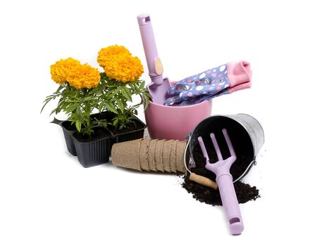 All the tools for planting springtime flowers